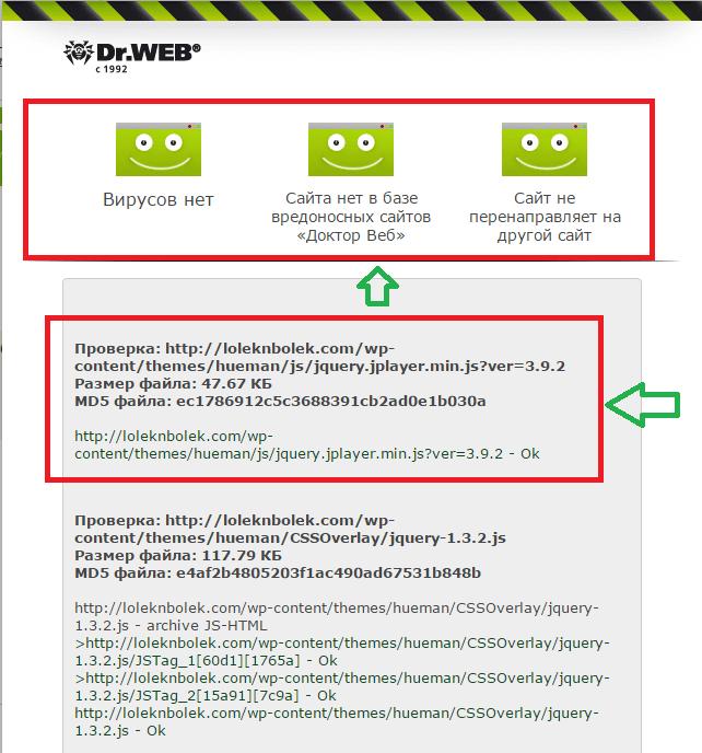 Пример результатов проверки Dr. WEB