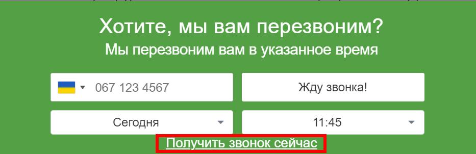 Текст, который отобразится в форме для заказа отложенного звонка